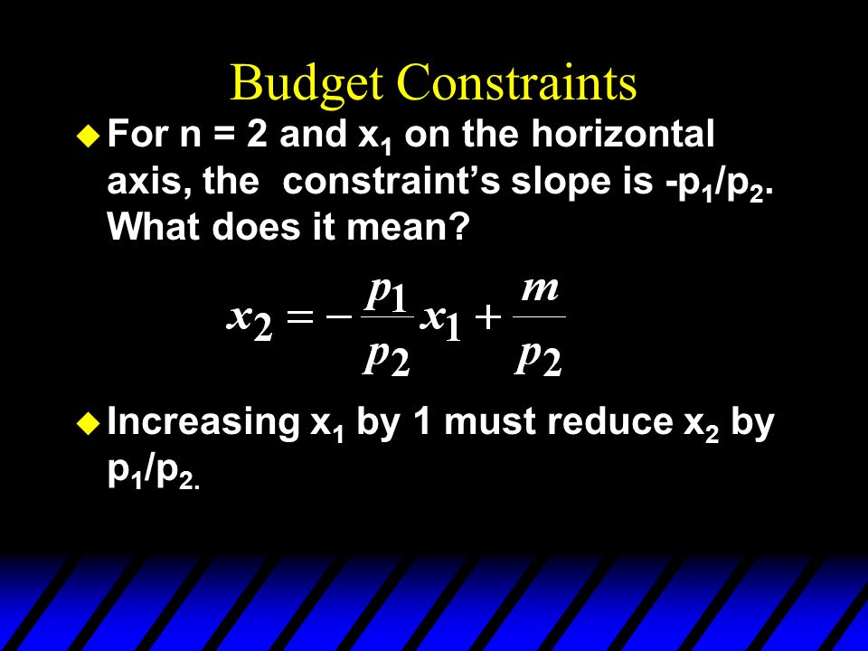 Budget Constraints For n = 2 and x1 on the horizontal axis, the constraint's slope is -p1/p2. What does it mean
