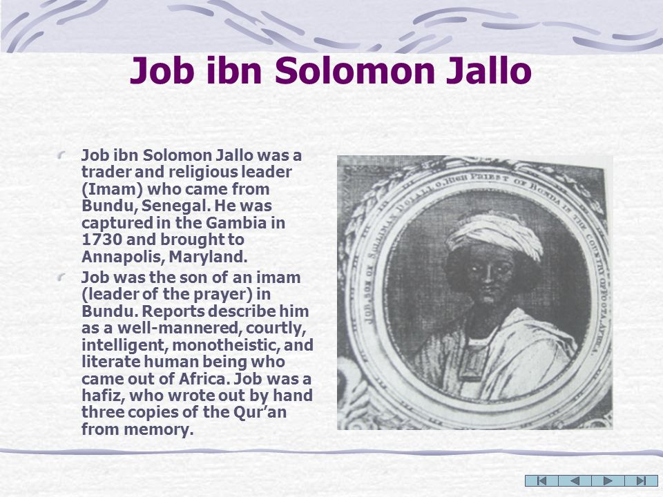 Job ibn Solomon Jallo