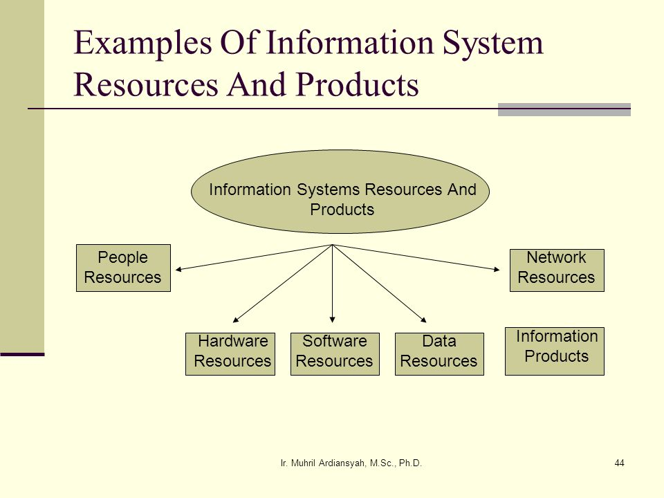 Examples Of Information System Resources And Products