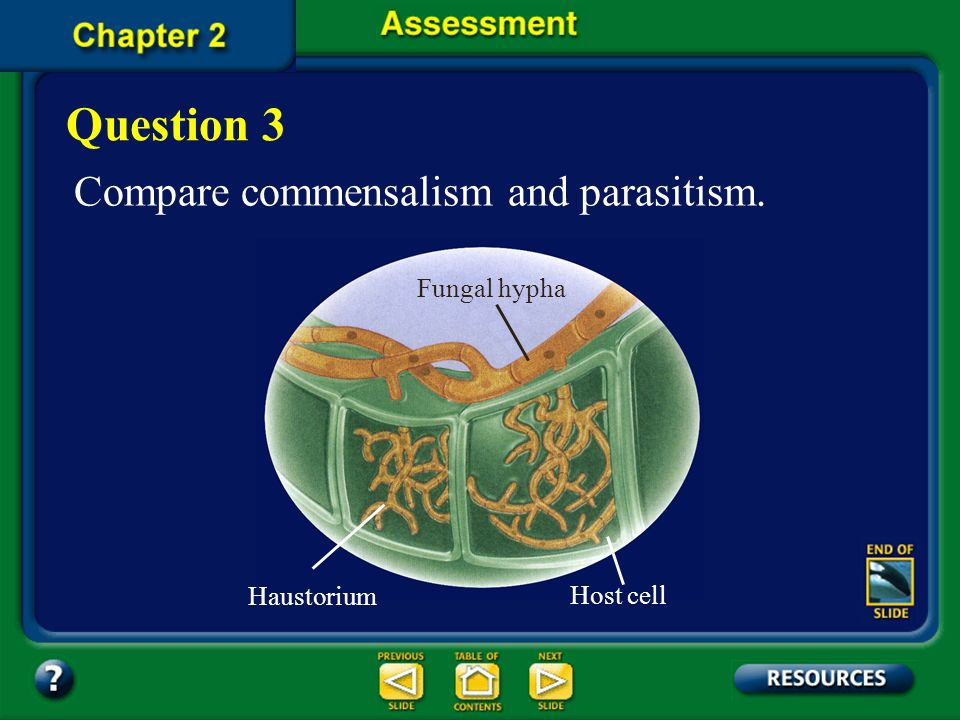 Question 3 Compare commensalism and parasitism. Fungal hypha