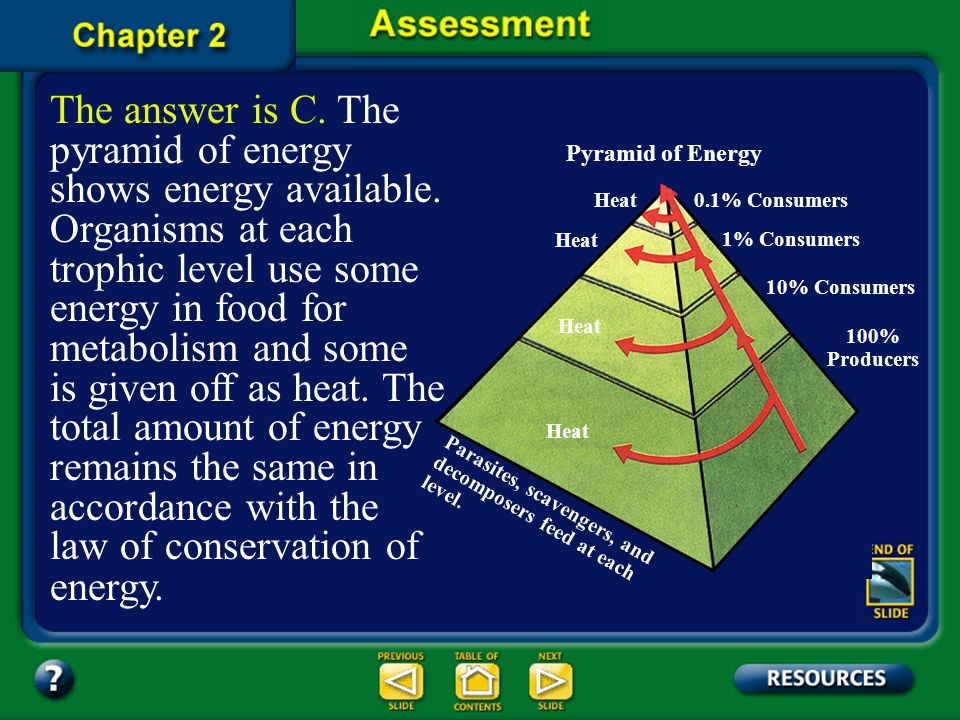 The answer is C. The pyramid of energy shows energy available