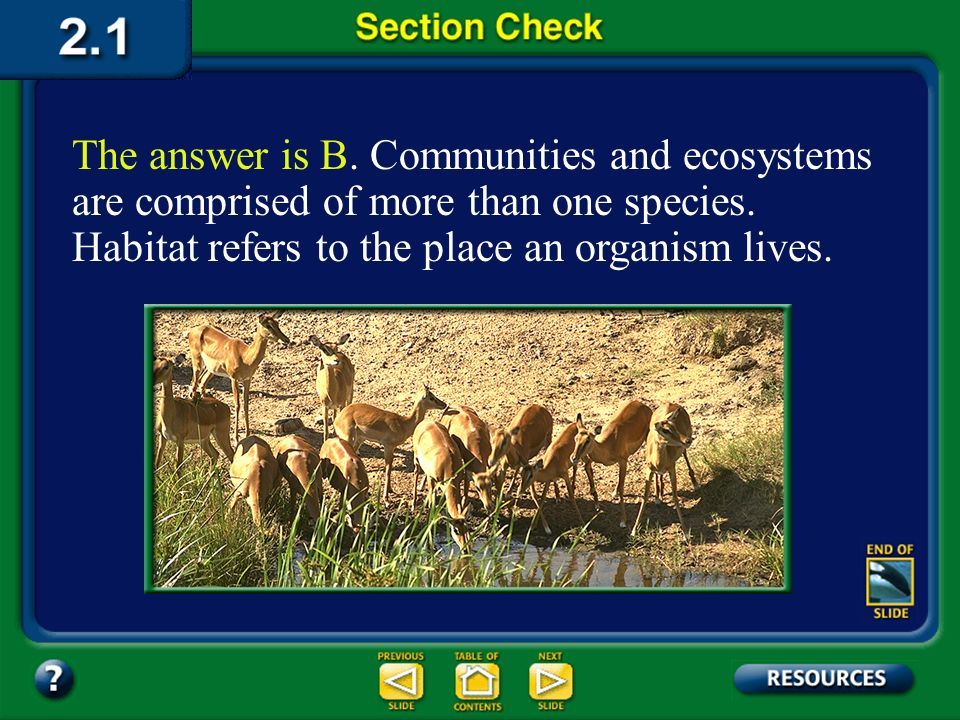 The answer is B. Communities and ecosystems are comprised of more than one species. Habitat refers to the place an organism lives.