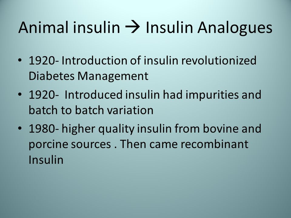 Animal insulin  Insulin Analogues