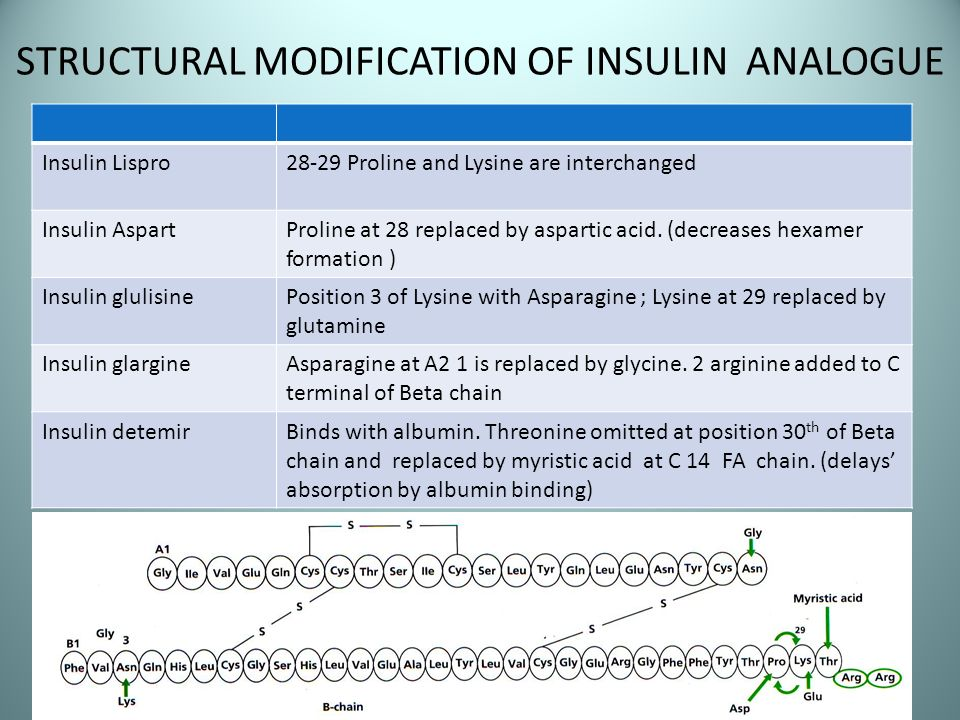 STRUCTURAL MODIFICATION OF INSULIN ANALOGUE