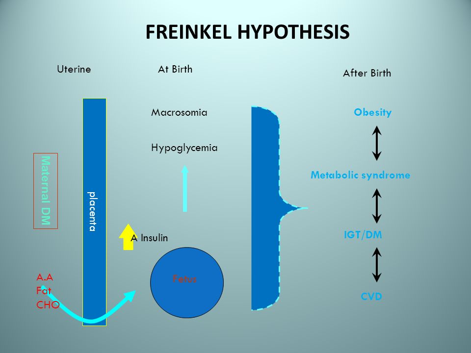 FREINKEL HYPOTHESIS Uterine At Birth After Birth placenta Macrosomia