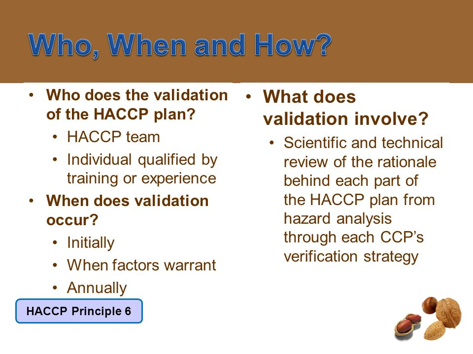 Who, When and How What does validation involve