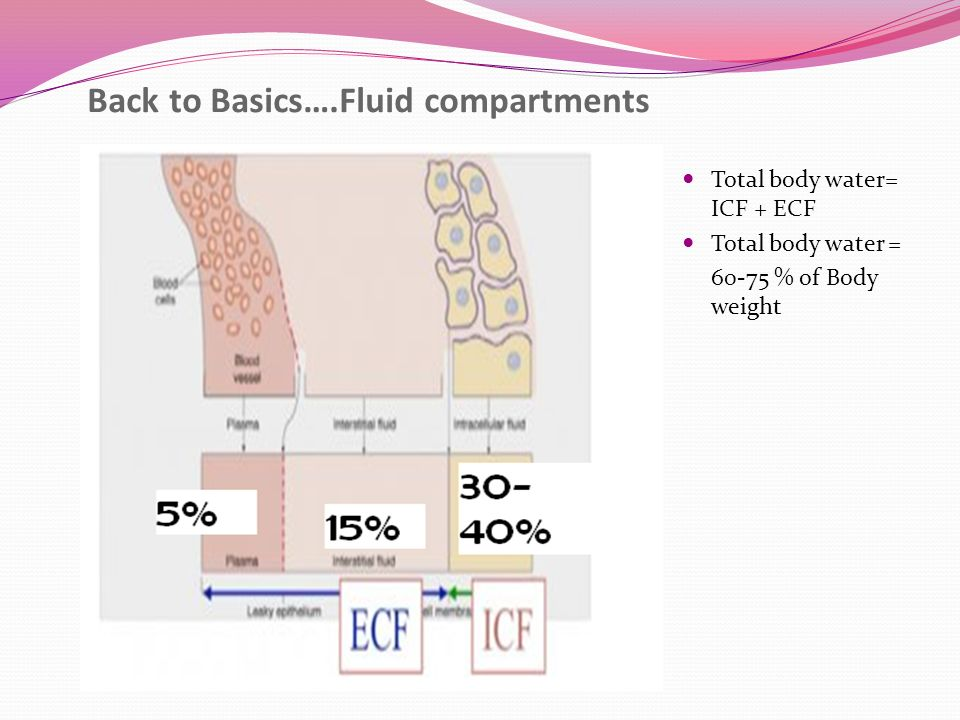 Back to Basics….Fluid compartments