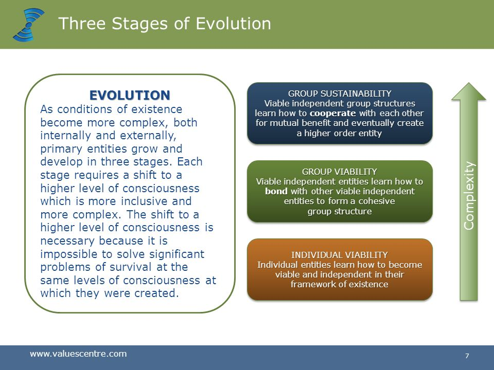 Three Stages of Evolution