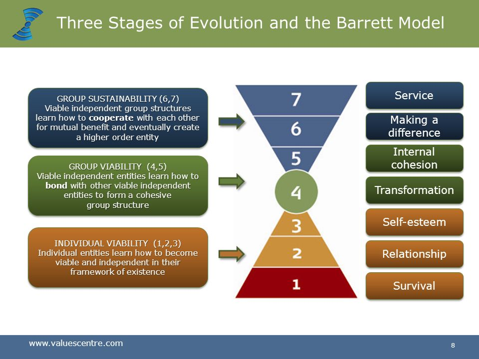 Three Stages of Evolution and the Barrett Model