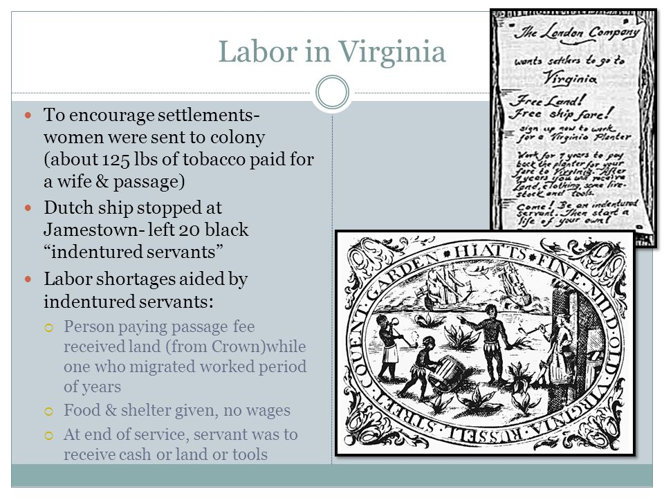 Labor in Virginia To encourage settlements- women were sent to colony (about 125 lbs of tobacco paid for a wife & passage)