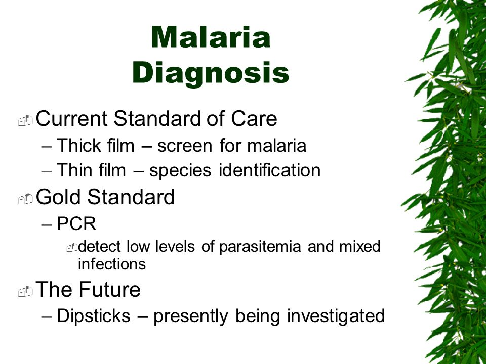 Malaria Diagnosis Current Standard of Care Gold Standard The Future