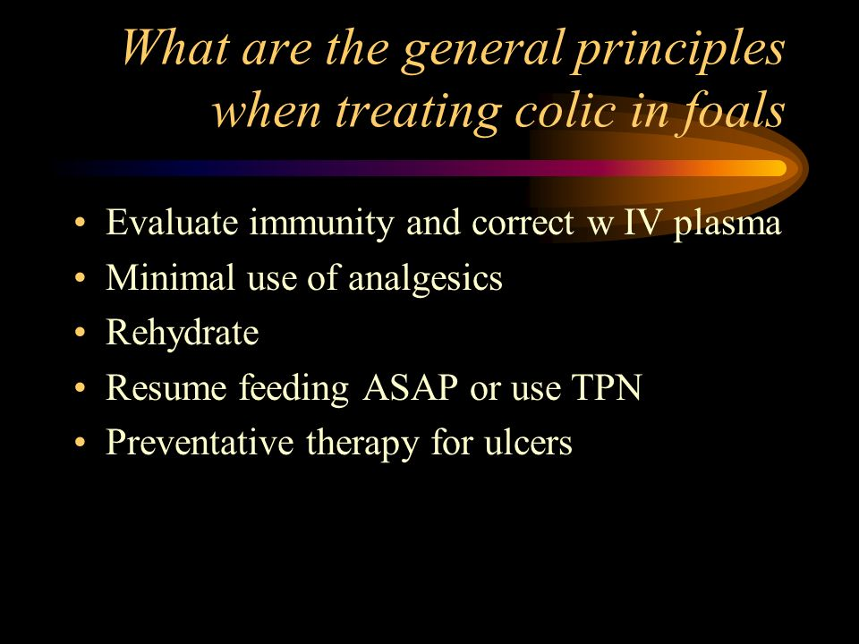 What are the general principles when treating colic in foals
