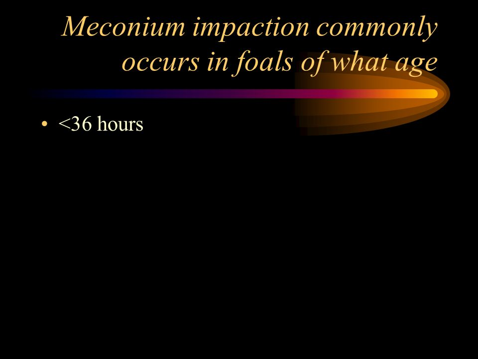 Meconium impaction commonly occurs in foals of what age