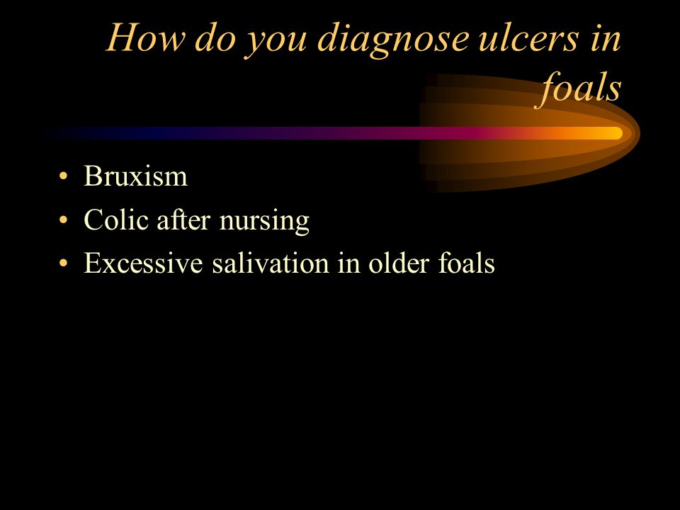 How do you diagnose ulcers in foals
