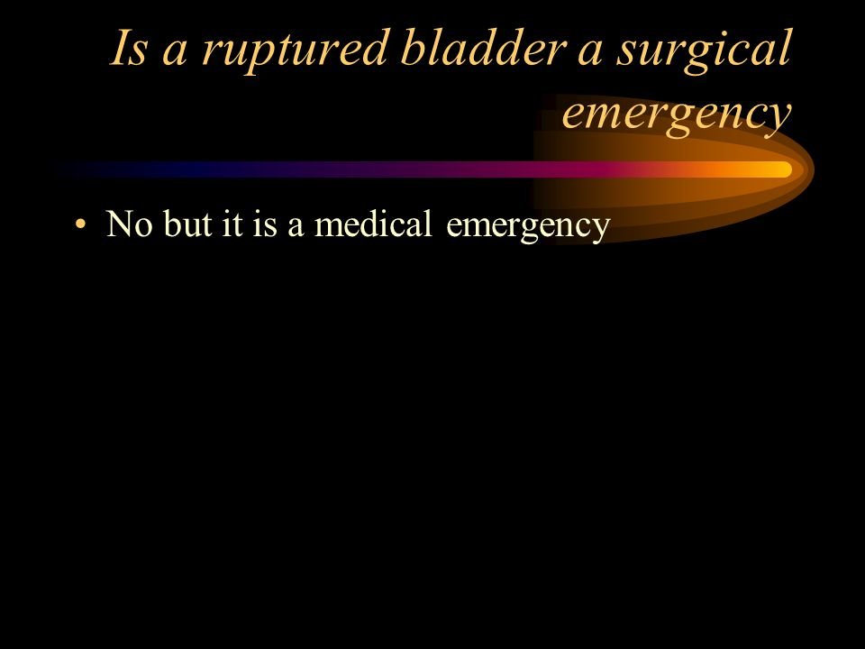 Is a ruptured bladder a surgical emergency