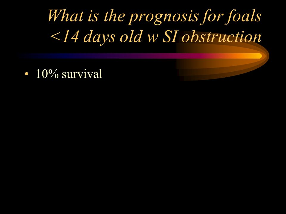 What is the prognosis for foals <14 days old w SI obstruction