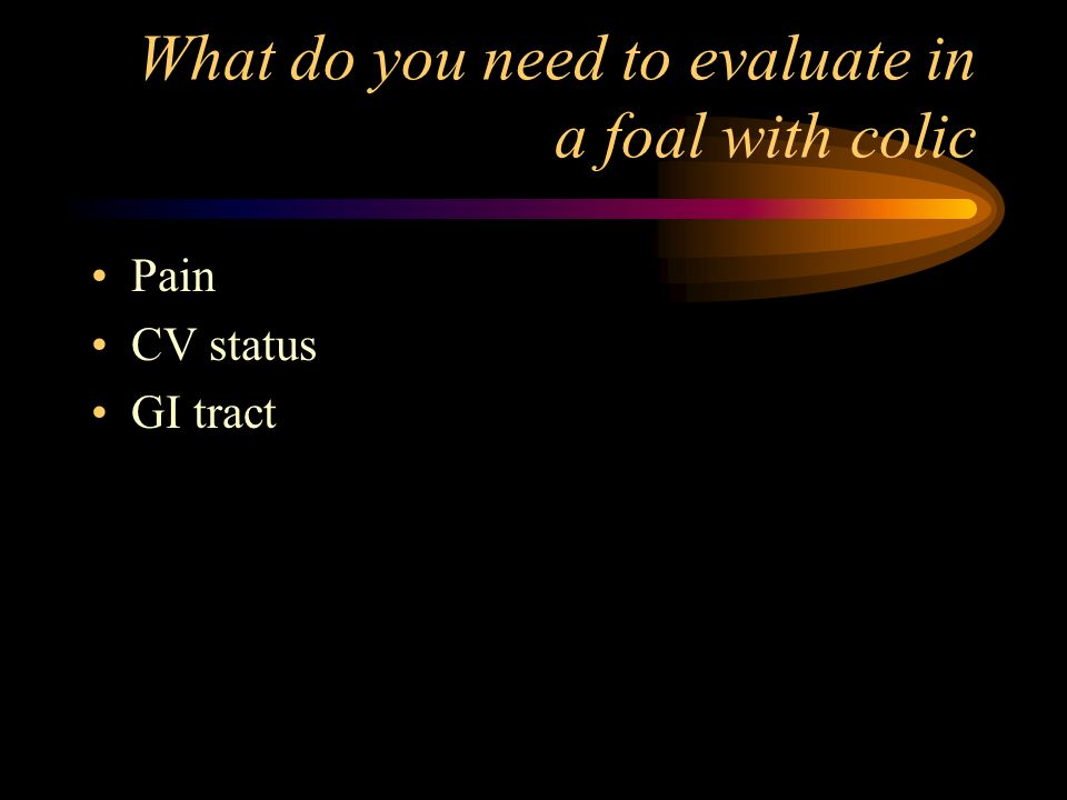 What do you need to evaluate in a foal with colic