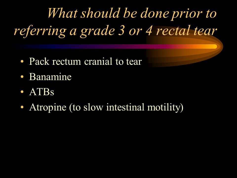 What should be done prior to referring a grade 3 or 4 rectal tear