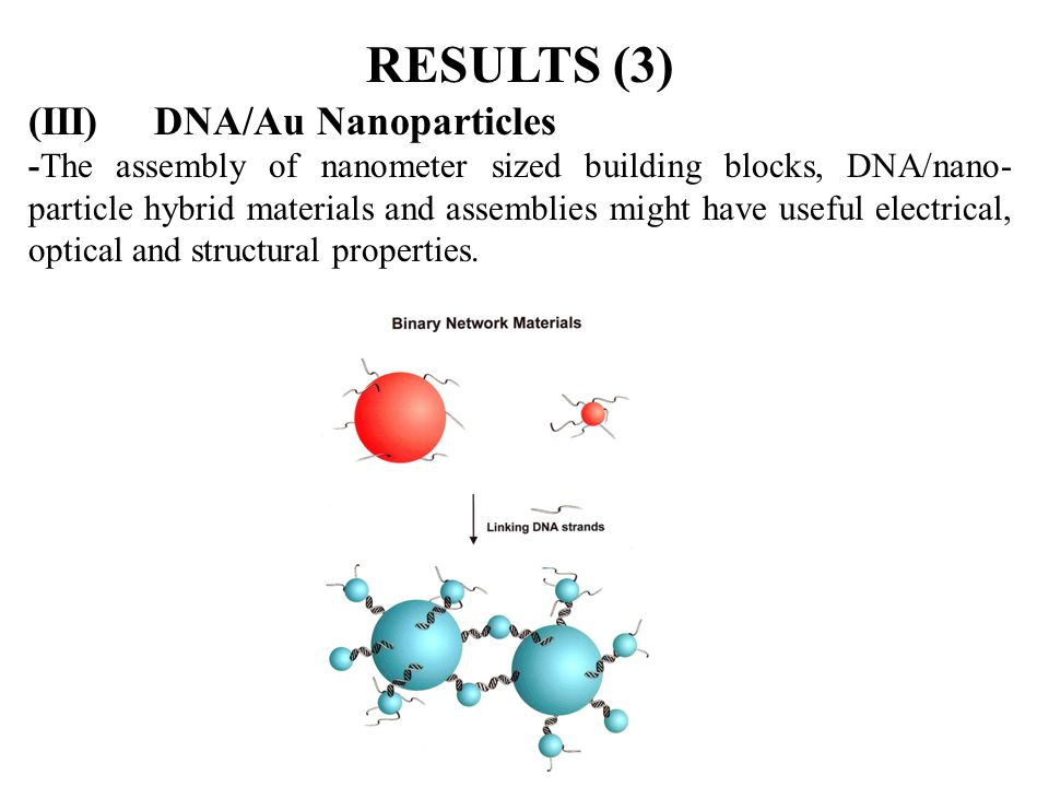 RESULTS (3) (III) DNA/Au Nanoparticles