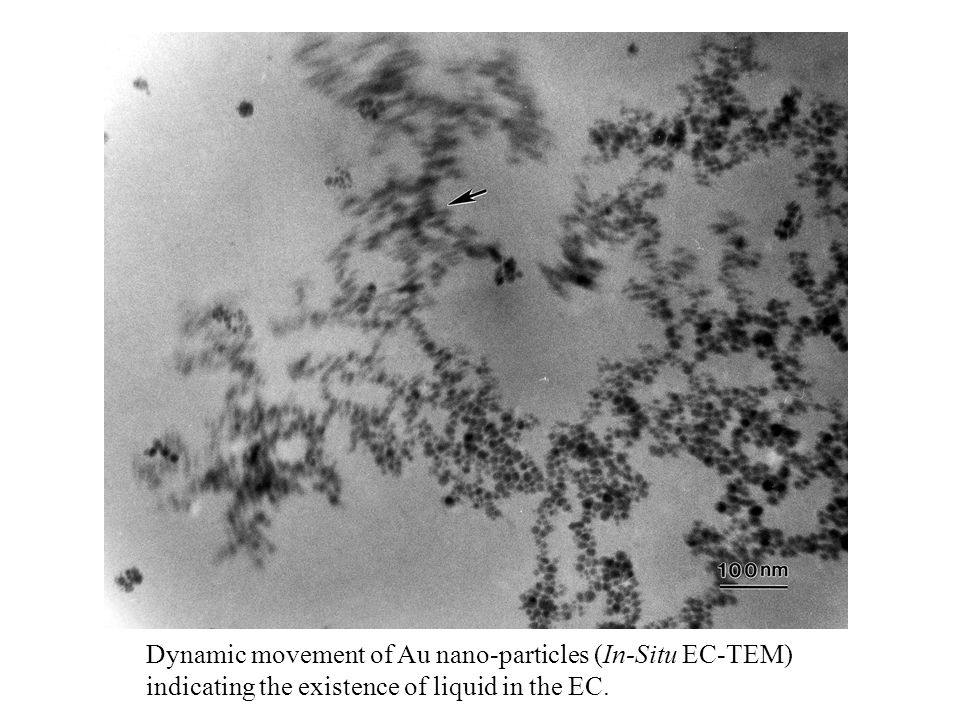 Dynamic movement of Au nano-particles (In-Situ EC-TEM) indicating the existence of liquid in the EC.