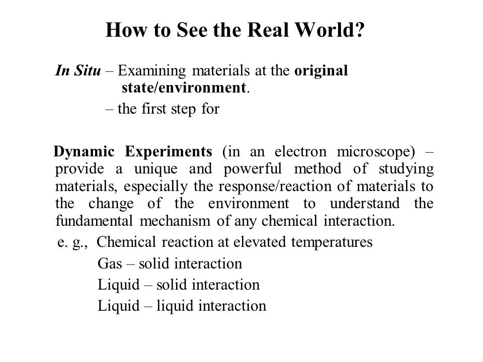 How to See the Real World