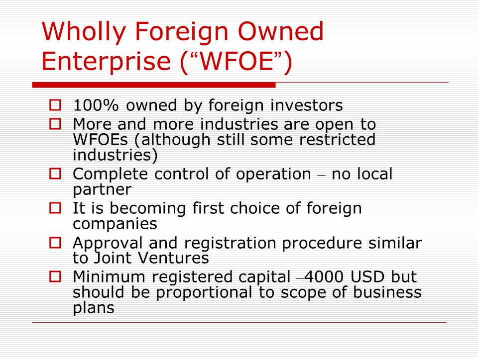 Wholly Foreign Owned Enterprise ( WFOE )