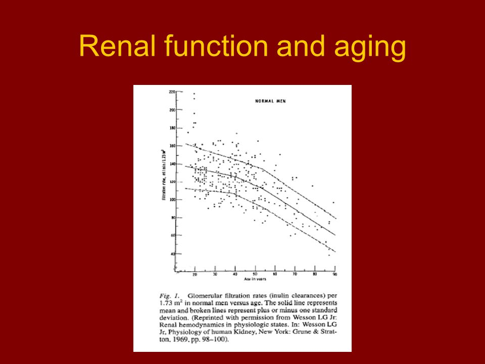 Renal function and aging