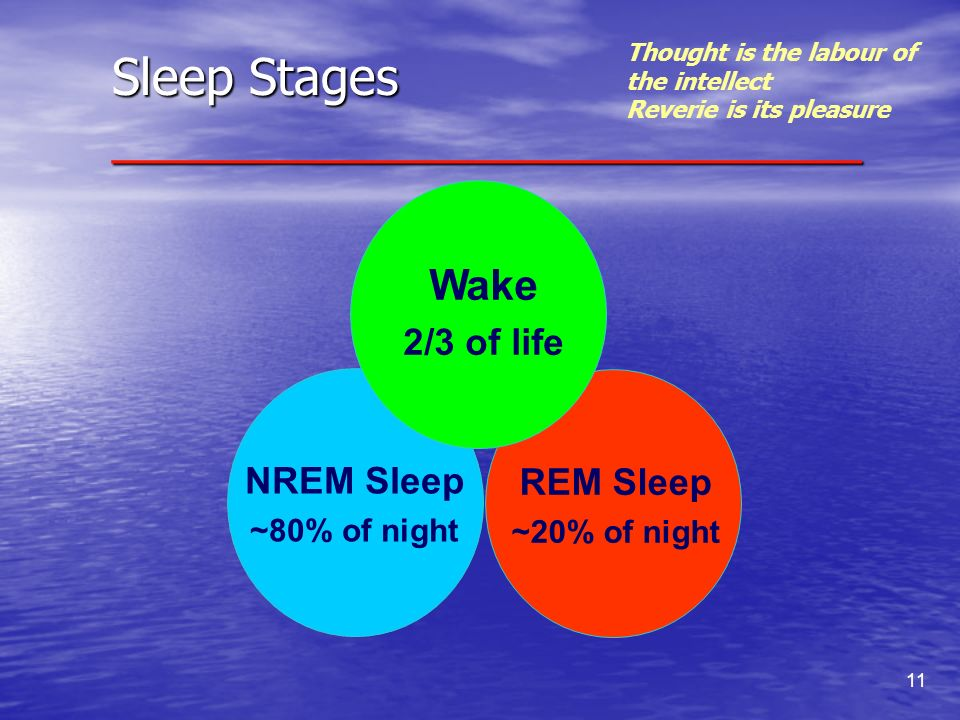 Sleep Stages ___________________________
