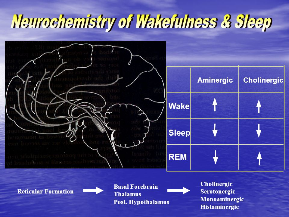 Neurochemistry of Wakefulness & Sleep