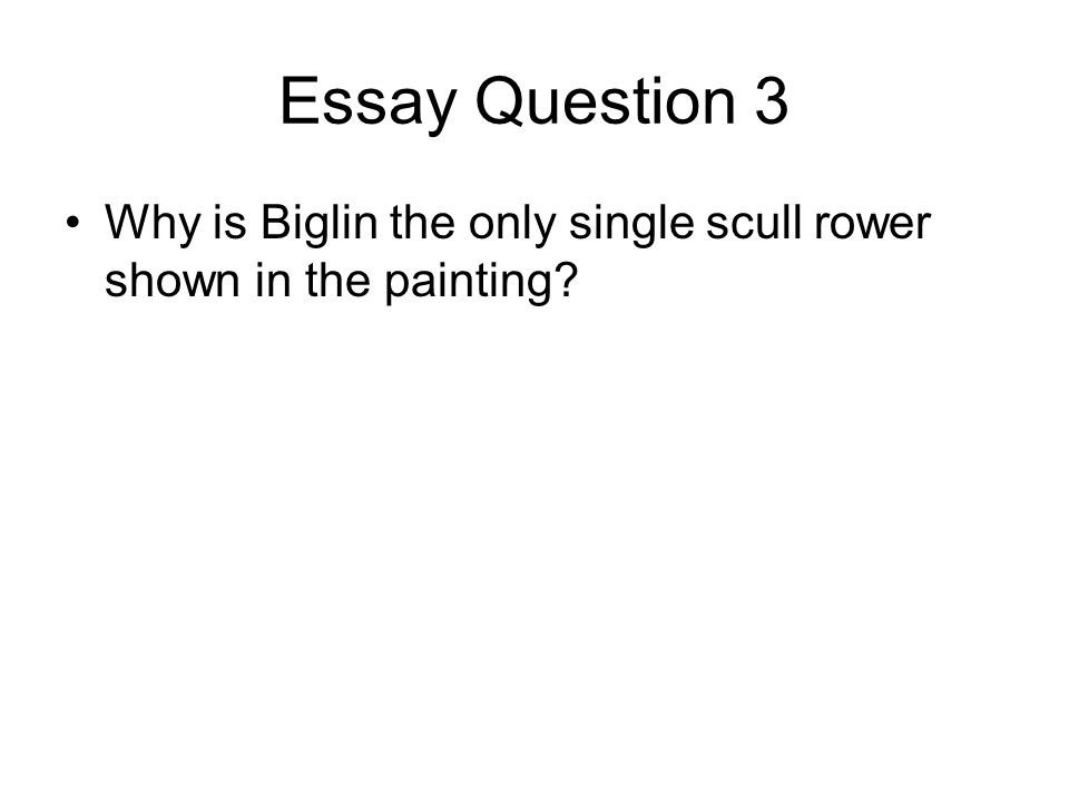 Essay Question 3 Why is Biglin the only single scull rower shown in the painting