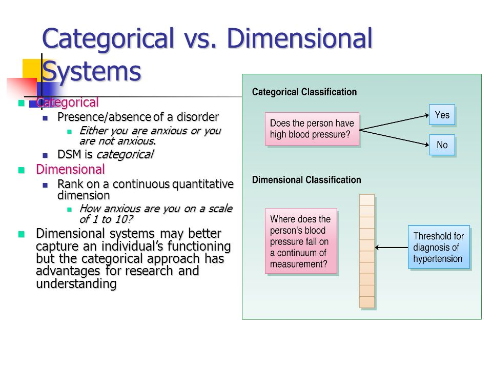 Categorical vs. Dimensional Systems