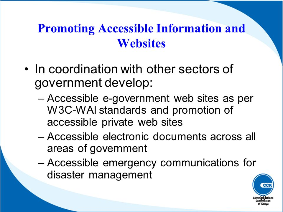 Promoting Accessible Information and Websites