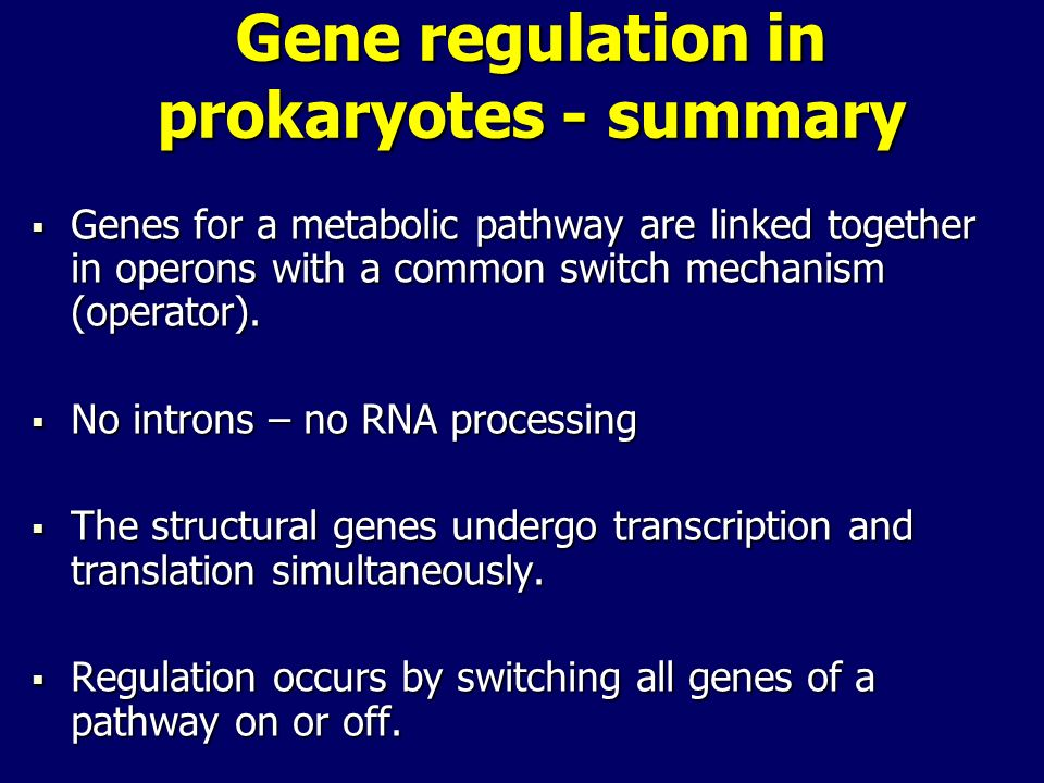 Gene regulation in prokaryotes - summary