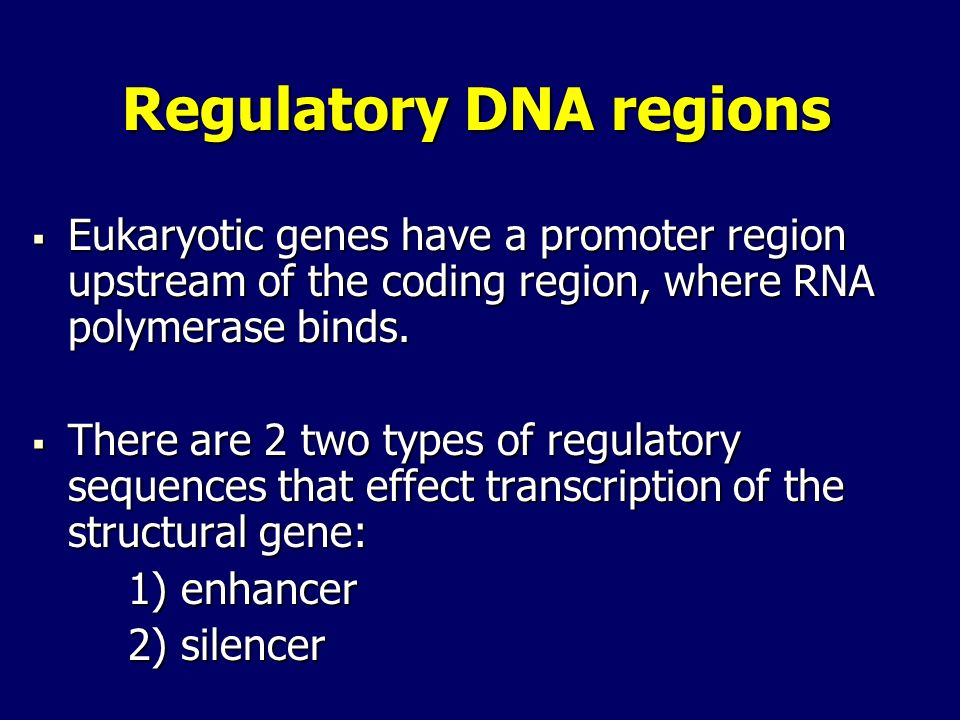 Regulatory DNA regions