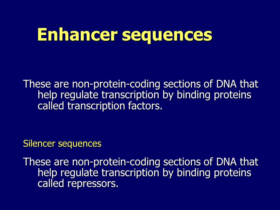 Enhancer sequences These are non-protein-coding sections of DNA that help regulate transcription by binding proteins called transcription factors.