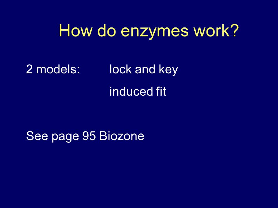 How do enzymes work 2 models: lock and key induced fit