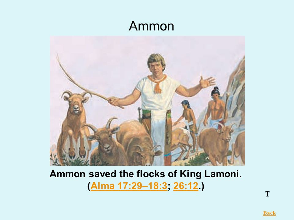 Ammon saved the flocks of King Lamoni. (Alma 17:29–18:3; 26:12.)