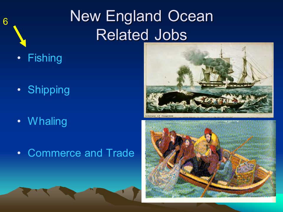 New England Ocean Related Jobs