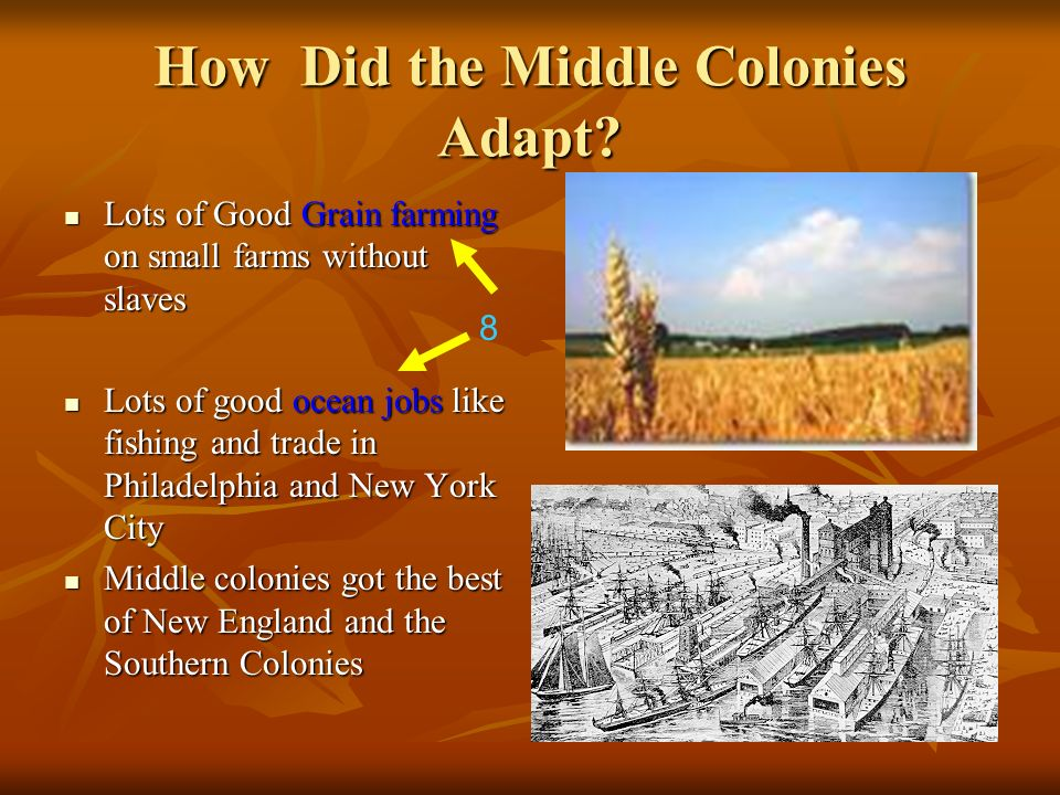 How Did the Middle Colonies Adapt