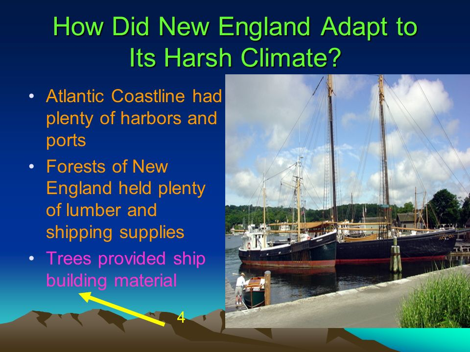How Did New England Adapt to Its Harsh Climate