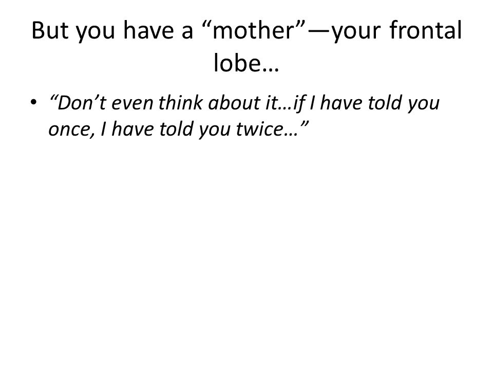 But you have a mother —your frontal lobe…