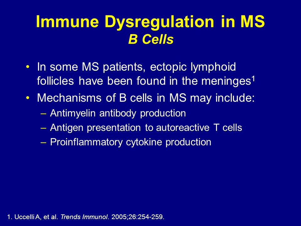 Immune Dysregulation in MS B Cells