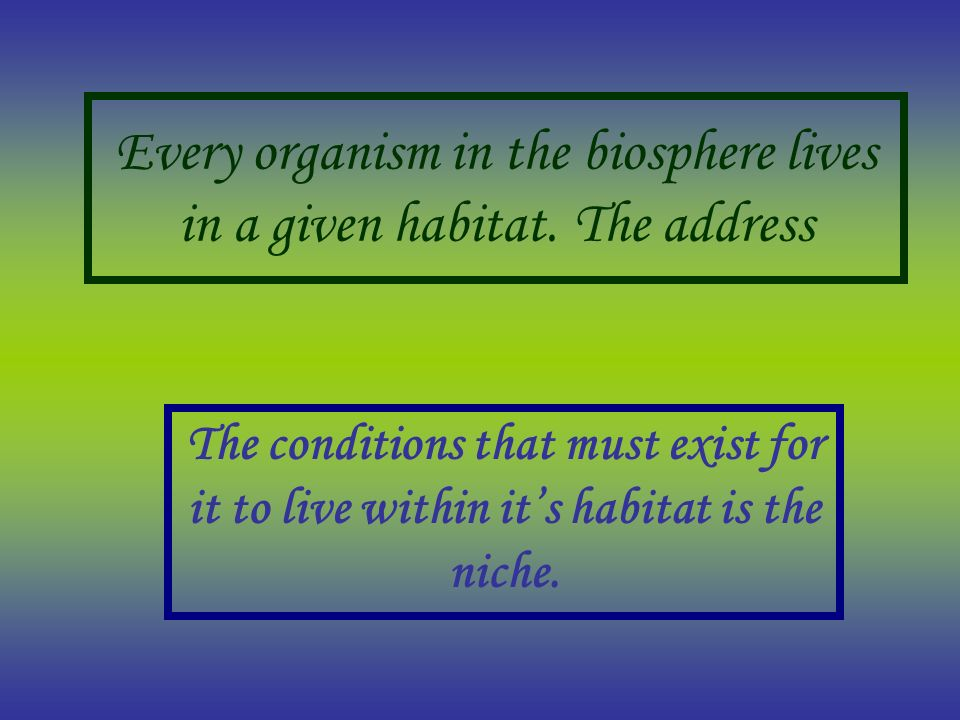 Every organism in the biosphere lives in a given habitat. The address