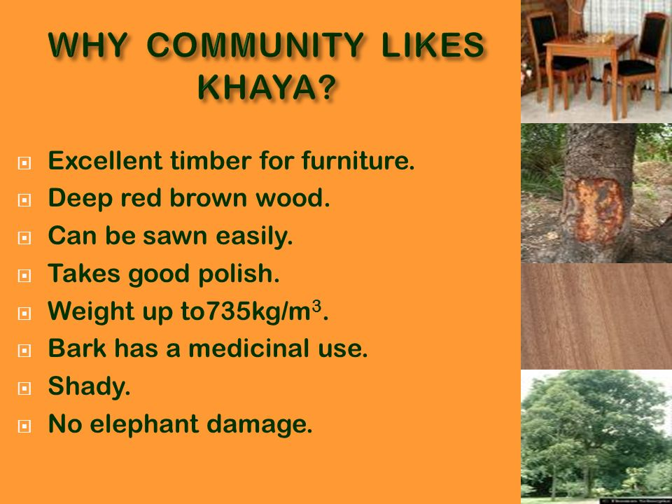 WHY COMMUNITY LIKES KHAYA