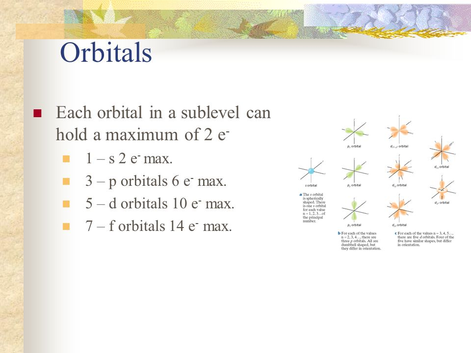 Orbitals Each orbital in a sublevel can hold a maximum of 2 e-