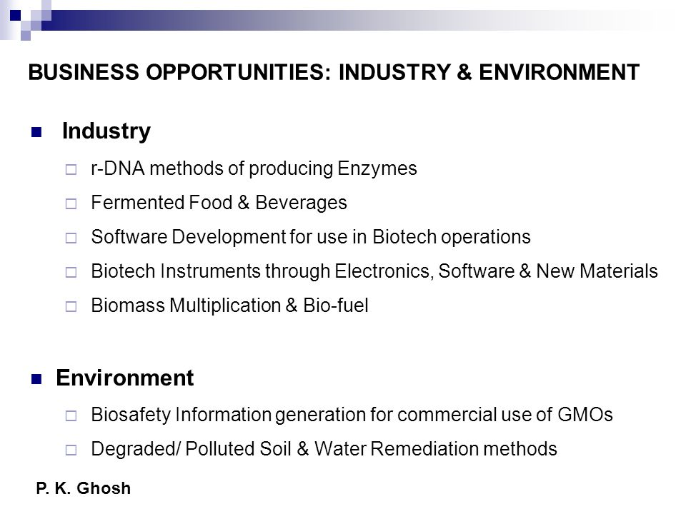 BUSINESS OPPORTUNITIES: INDUSTRY & ENVIRONMENT