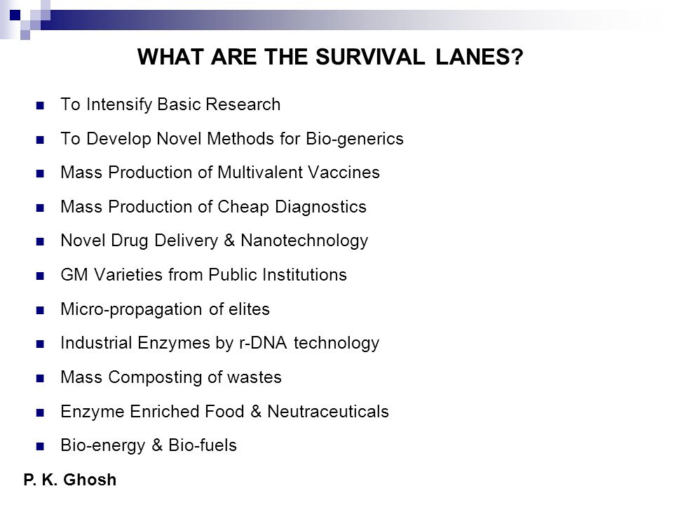 WHAT ARE THE SURVIVAL LANES
