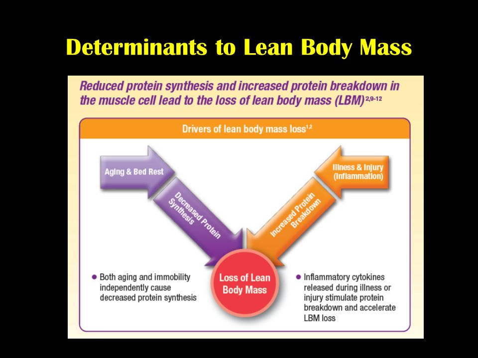Determinants to Lean Body Mass