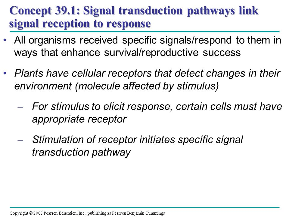 Concept 39.1: Signal transduction pathways link signal reception to response