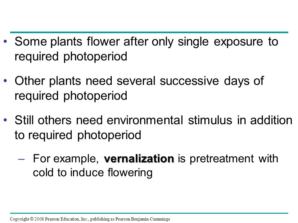 Some plants flower after only single exposure to required photoperiod